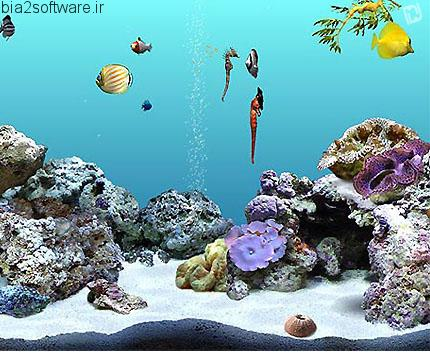 DigiFish SeaHorse v1.0 اسکرین سیور اسب ماهی ها