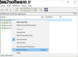 بازیابی فایل های از دست رفته درایو DMDE 3.2.0 Windows